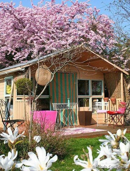 18 best images about girl shed on pinterest studios for Cottage sheds