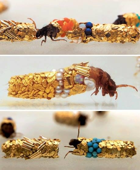 Caddisfly larvae build protective cases using materials found in their environment. Artist Hubert Duprat supplied them with gold leaf and precious stones. This is what they created.  http://www.zeohclassifieds.com/
