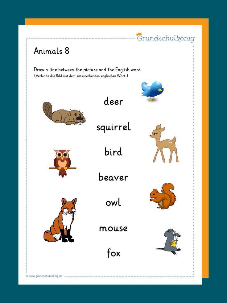 kostenlose vorlagen und arbeitsblätter zum thema animals