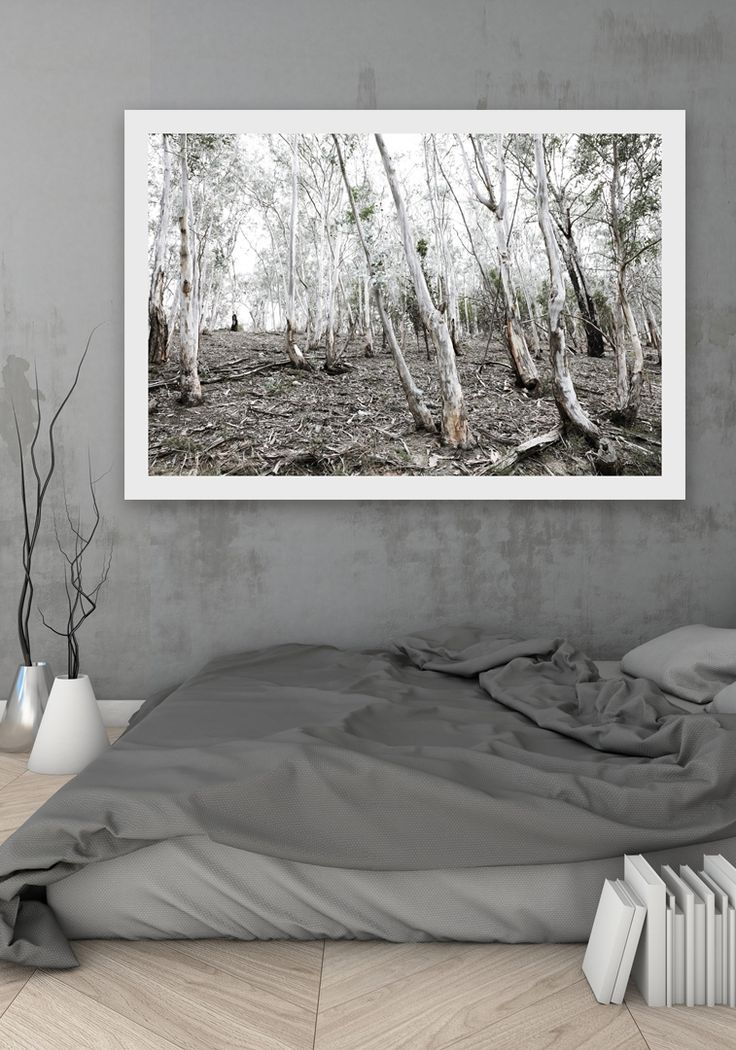 SILVER BARK  Fine Art Photographic Print via Hedgerow+Stone | Lisa Perhat | Photography. Click on the image to see more!