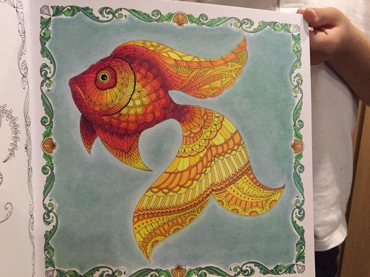 330 best Color book lost ocean