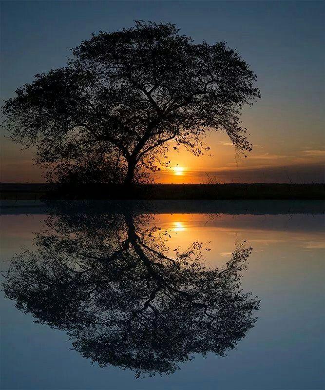 Beautiful Nature Image: Sunset, Beautiful Sunset, Nature