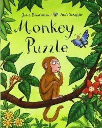 Monkey Puzzle teaching ideas