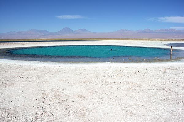 Swimming in a thermal lake of Sejar in the the driest desert in the world, Chile's Atacama