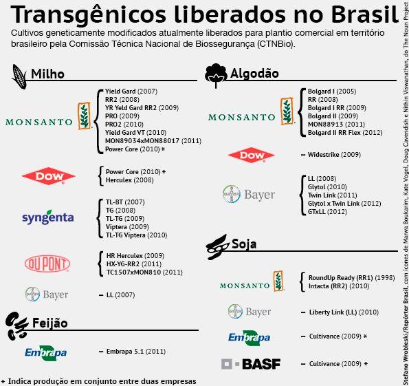 Lista de alimentos transgênicos e seus efeitos devem ser divulgados e colocados sob consulta pública