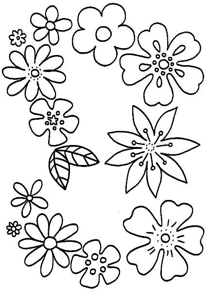 13 best Blumen Ausmalbilder images on Pinterest | Images of flowers ...