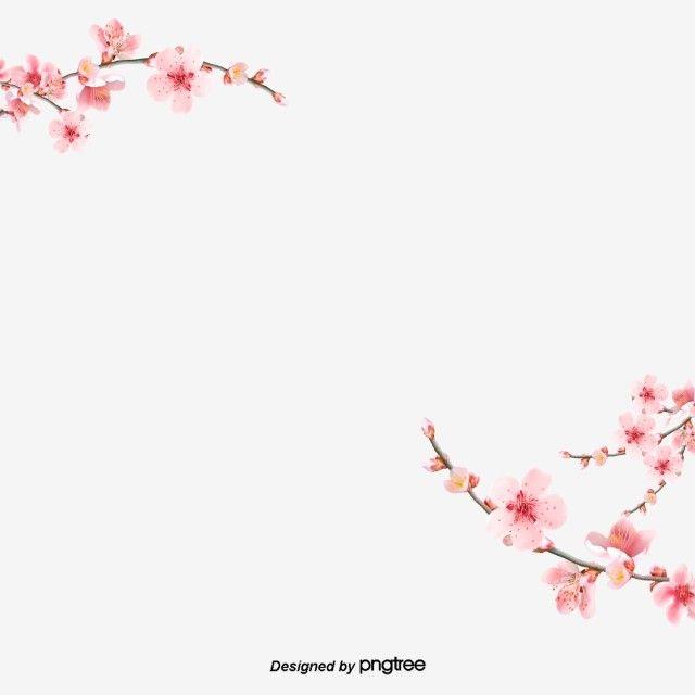 أزهار الكرز الوردي الديكور زهرة رومانسي أخضر Png وملف Psd للتحميل مجانا Cherry Blossom Background Watercolor Flower Vector Flower Clipart