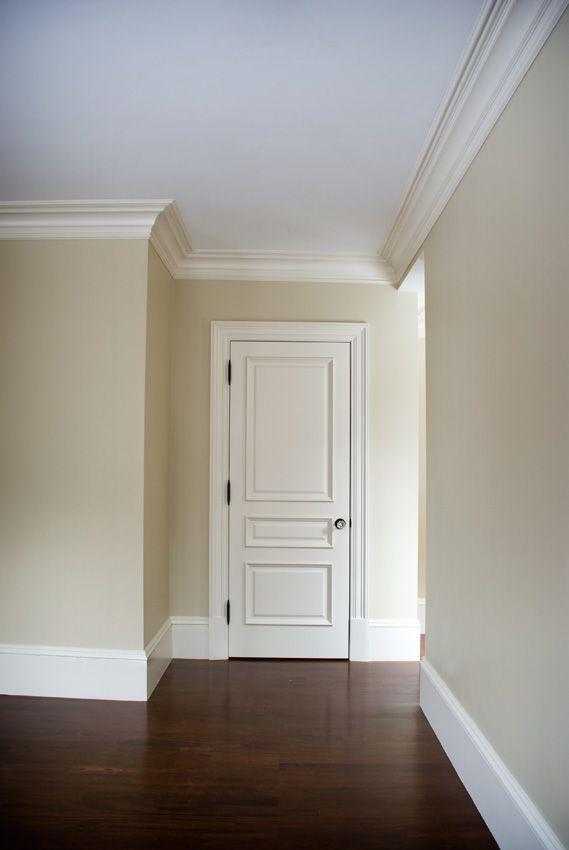 Trustile Interior Door - interior door option Want to do this on the front door to update it.