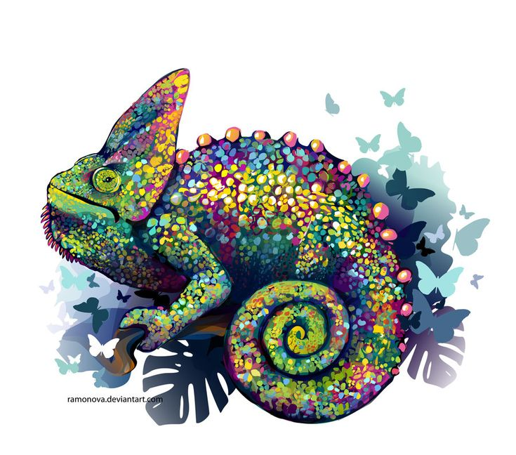 les 914 meilleures images du tableau art salamandre