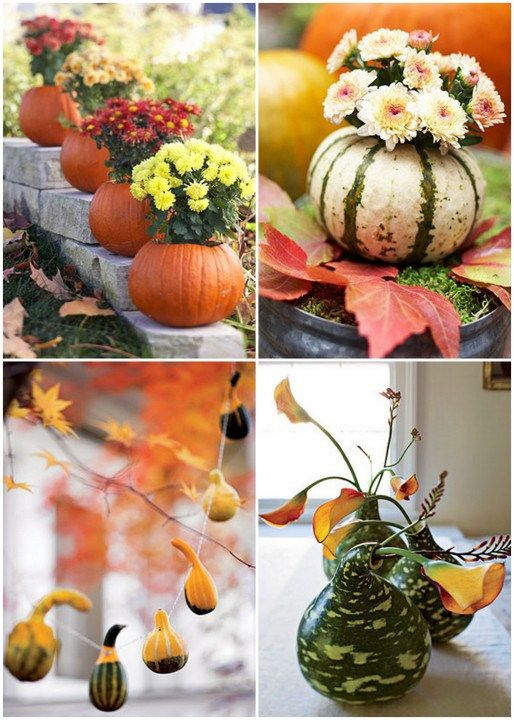 Best images about decorating with mums on pinterest