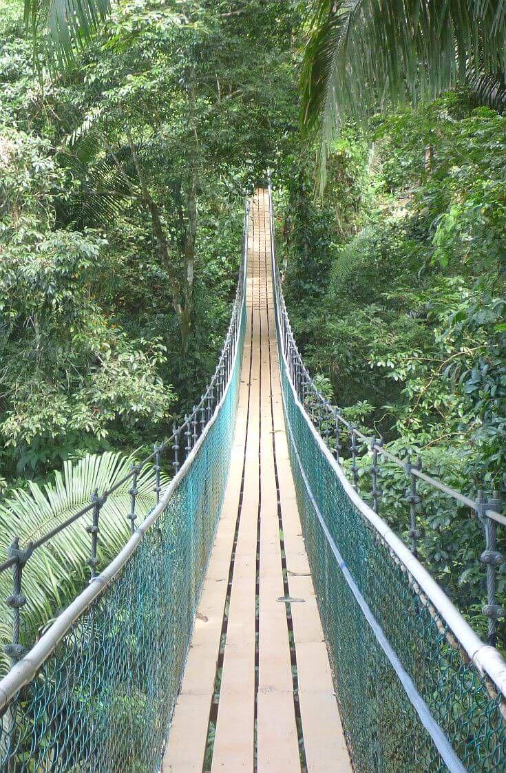 Bocawina Rainforest Resort For Jungle Adventures In Belize