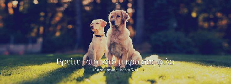 """Τώρα υπάρχει το """"χρυσό κουφέτο"""" και για τον σκύλο σου και λέγετα Doggrin.gr - http://ipop.gr/themata/eimai/tora-yparchi-chryso-koufeto-ke-gia-ton-skylo-sou-ke-legeta-doggrin-gr/"""