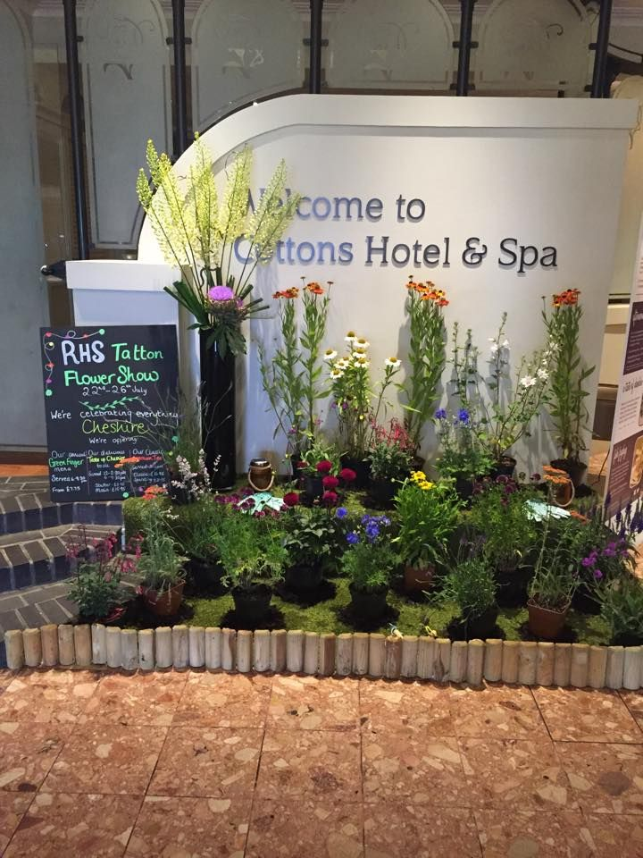 We are getting into the spirit of #RHSTatton & have just created this beautiful floral display #Knutsford