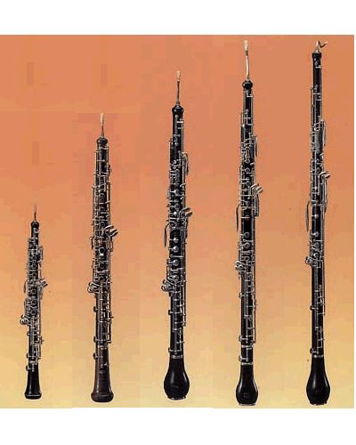 95b749d435fd5b94748493db7cd17d79 oboe bass 36 best oboe english horn basson images on pinterest oboe Parts of the English Saddle and Bridle at readyjetset.co