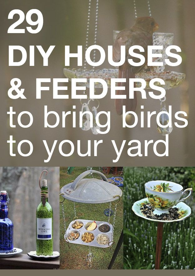 29 DIY houses & feeders to bring birds to your yard