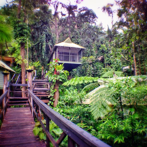 Daintree Eco Lodge & Spa, Lower Daintree, Australia — by YoungAdventuress. The Daintree Ecolodge is an amazing property located in the Daintree Rainforest in northern Queensland, Australia....