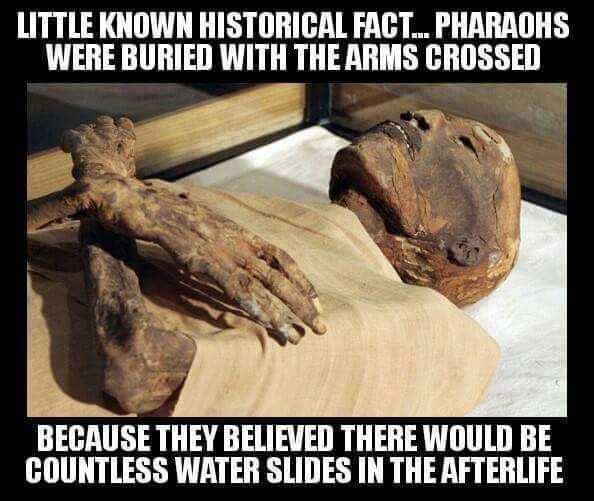 Rare Egyptian burn. Wow I really am twisted! I found that funny...