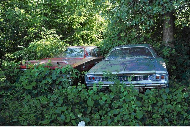 Free Barns for Sale | Cars In Barns | Project Cars Blog & Discussion at Popular Hot Rodding ...