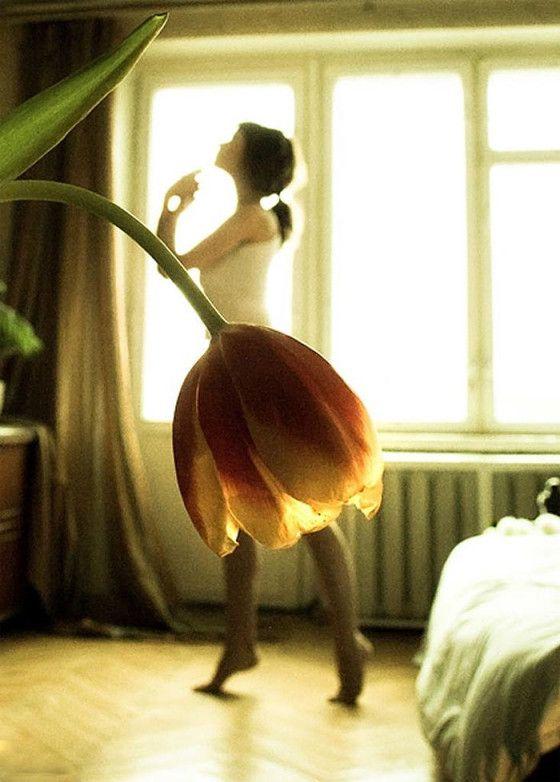 花を女性のスカートに見立てて撮影された、まるで花のドレスを身にまとっているような、とても空気感の美しい写真