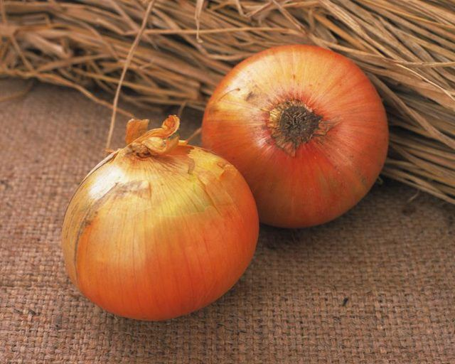 How to Substitute Onion Powder For Onions