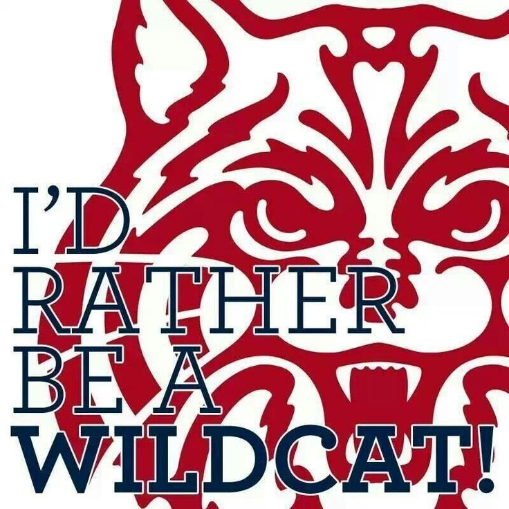 University of Arizona Wildcats, Tucson Arizona.  GO CATS!!
