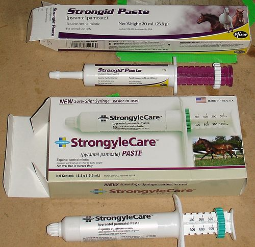 Save your old deworming syringes, wash them out thoroughly and fill them with applesauce and give to your horse as a treat. After awhile, your horse will no longer fight the dreaded tube being in his mouth.