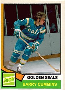 Miss the Golden Seals. Their time in the NHL was far too brief