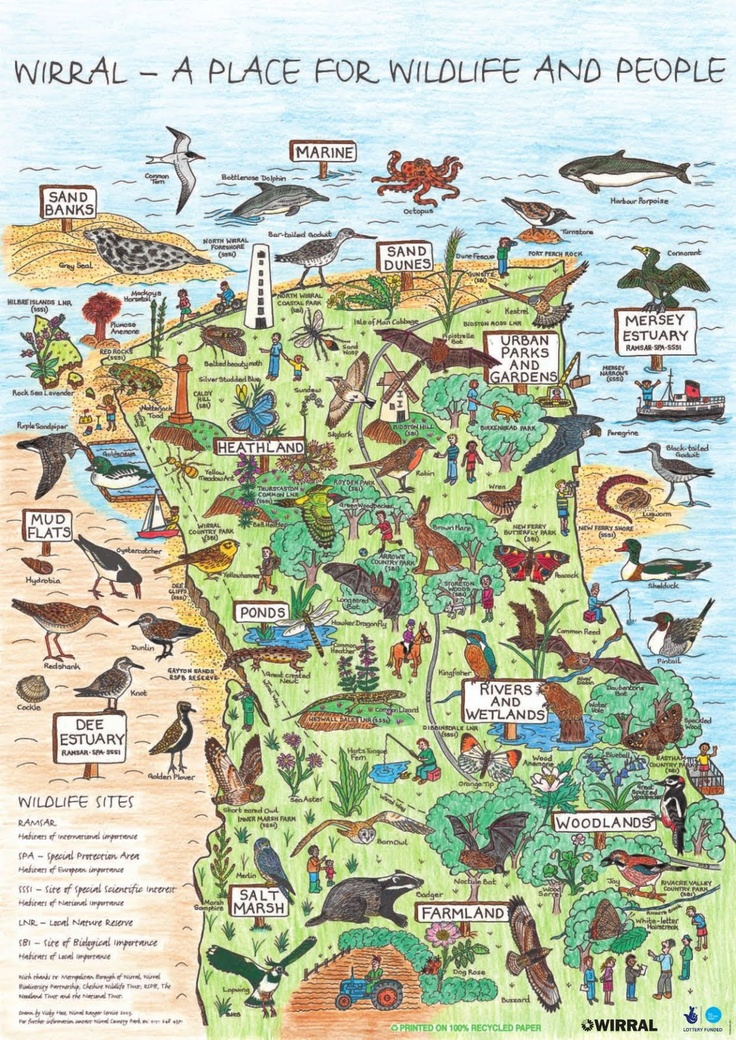 British Country Homes: Country Park, Wales Map, Map