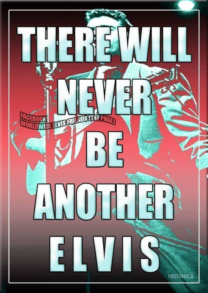 THERE WILL NEVER BE ANOTHER ELVIS