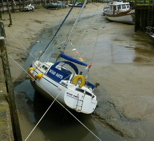 Should have gone out with the tide