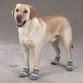 AllModern.com-Classic Sherpa Dog Boots