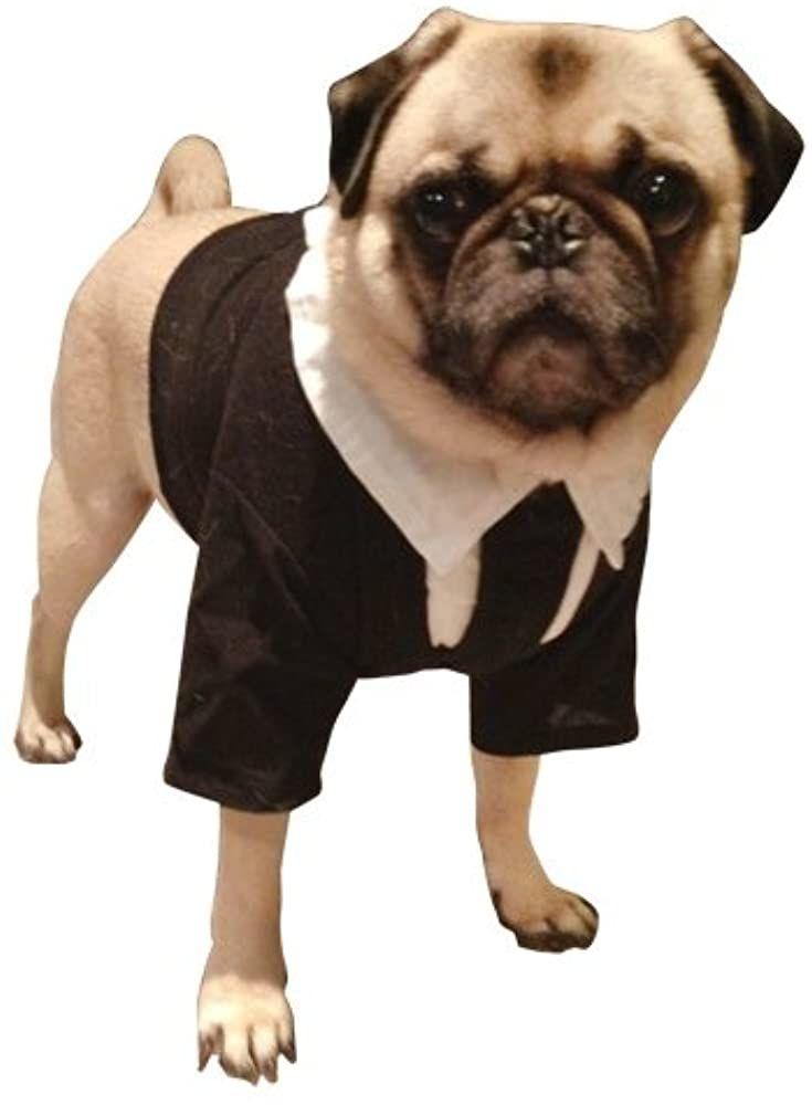 Amazon Com Pet Men In Black Ii Dog Costume For Medium Dogs Clothing In 2020 Pet Costumes Dog Costume Medium Dogs