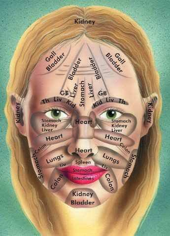 Apparently if you have skin issues on your face (acne, eczema, psoriasis, rashes, etc.) then it corresponds to that internal organ/area.