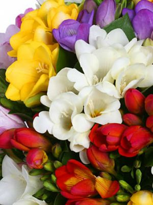 Same Day Flower delivery Melbourne www.dailyflowerdeals.com.au Daily Flower Deals