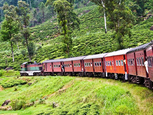 Enjoy the scenic rail journey between Nuwara Eliya and Ella