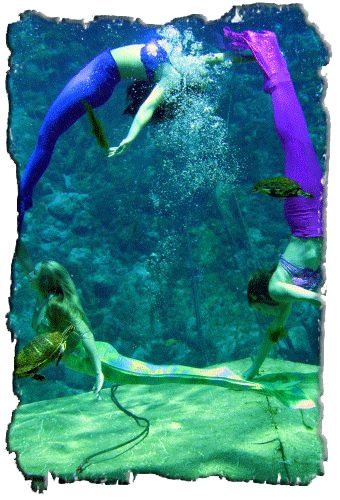 "Florida's Weeki Wachee Springs State Park ""The Only City of Live Mermaids"" - Want to take the kids here someday."