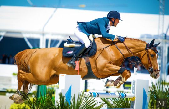 Simon Delestre and Chesall Zimequest, 11-year-old Holsteiner gelding (Casall x Concerto II)