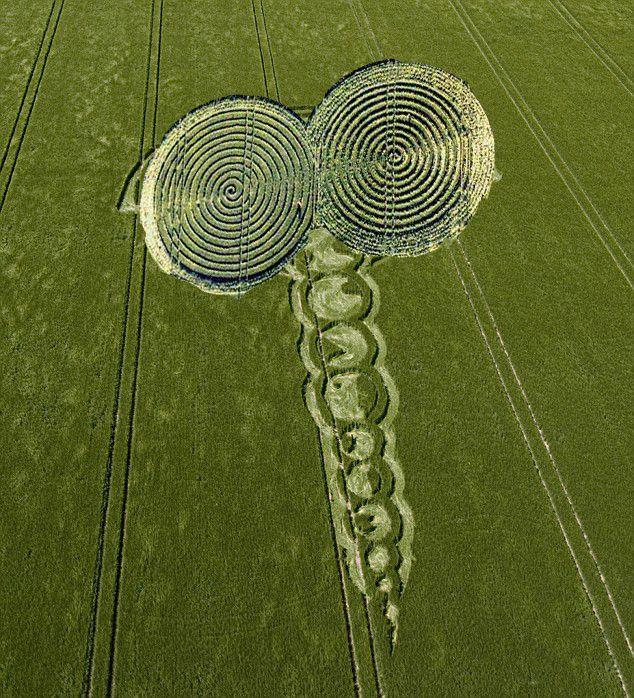 crop circles 2013 - Google Search