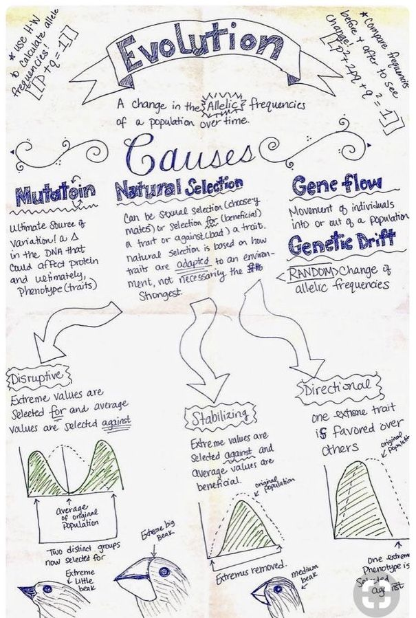 Pin by Life Science & Education on Biology | Biology lessons