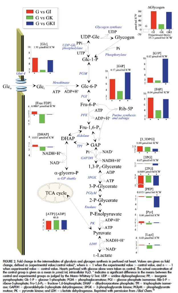 TJ. Thermodynamics: Free Energy  Home Table of Contents Thermodynamics Gateway Page In this module: Introduction DG and Reactions DG and Temperature DGfº Coupling Reactions Free Energy in Industry Free Energy in Living Things Free Energy and Equilibrium DG and Direction of Reactions To see how DG values can be used to predict how reactions will go, consider the four cases you encountered in the Entropy Module:  1. DH < 0, DS > 0:  This is an exothermic reaction with an increase in entropy…