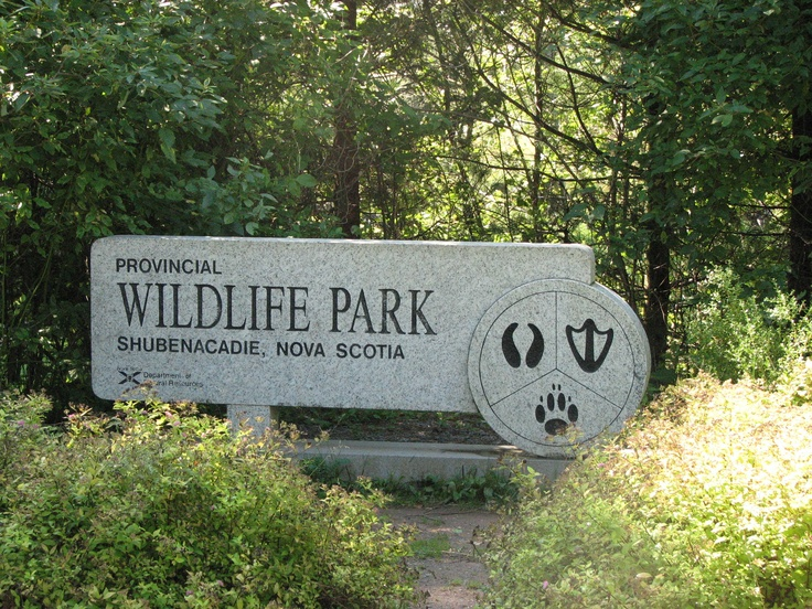 Shubenacadie wildlife park- wonderfull place to picnic and walk around lots of shade and a playground.
