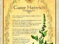 GuterHeinrich