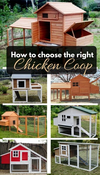 How-to-choose-the-right-chicken-coop. Choosing-the-right chicken-coop. Chicken-coop-comparison-chart. Picking-out-the-perfect-coop. http://homesteadwishing.com/how-to-choose-the-right-chicken-coop/   Homestead Wishing, Author, Kristi Wheeler   #chickens #