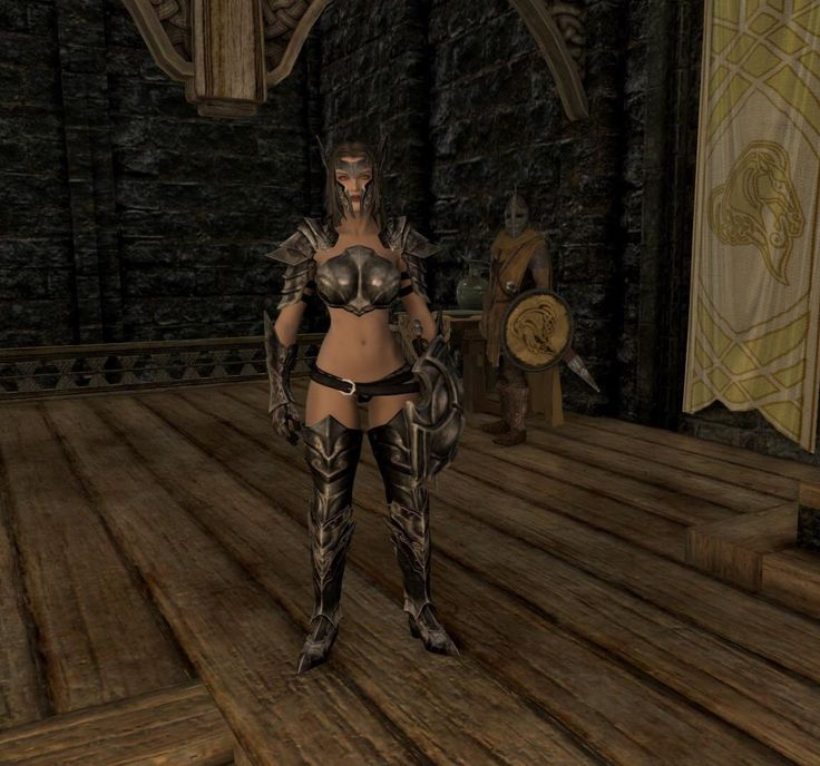 """Ebony armor. By Ysmir 'tis a wondrous sight"" #games #Skyrim #elderscrolls #BE3 #gaming #videogames #Concours #NGC"