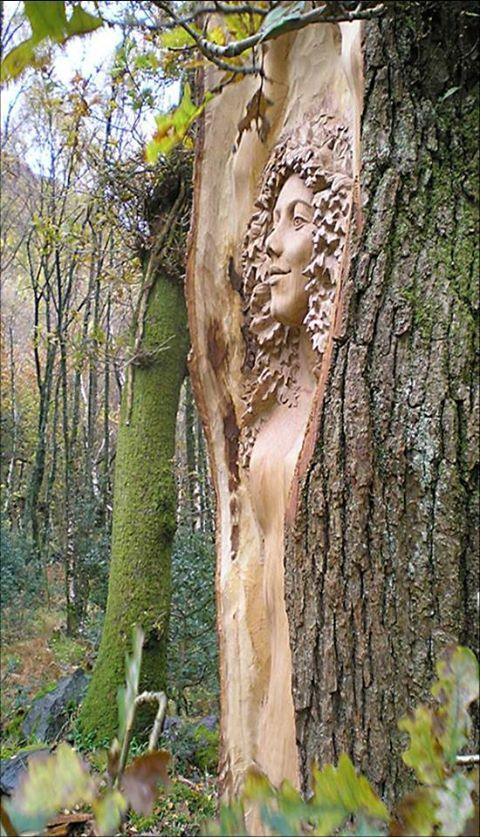 ~ oak tree carving ~ Peter Boyd ~ at Cae Mabon, Snowdonia, Wales ~