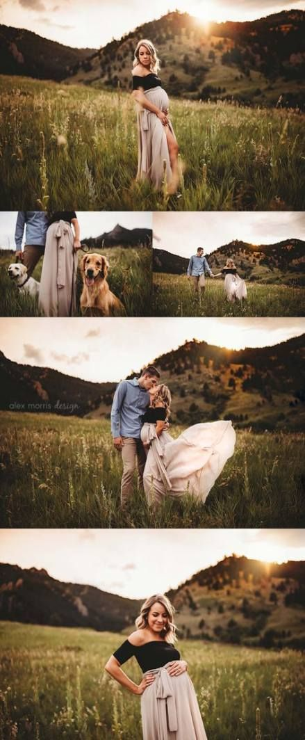 Fotografie Familienhund Golden Retriever 44 Ideen   – Beautiful Food Photography + Styling