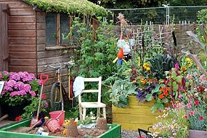 Dream Allotment - children's corner