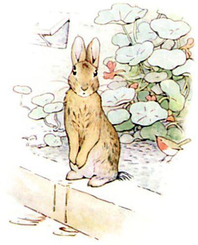25 Best Ideas About Peter Rabbit Tattoos On Pinterest