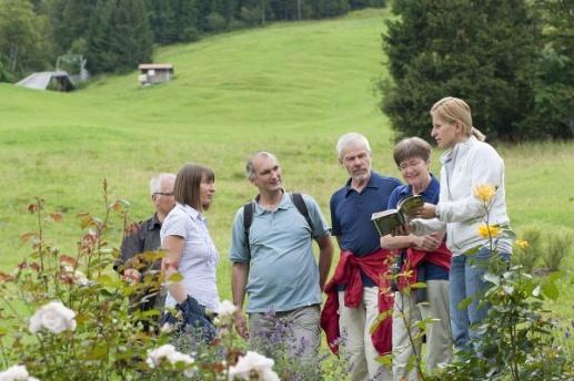 Kräuterwanderung mit der Gastgeberin von Biohotel Mattlihüs in Oberjoch in den #Allgäuer Bergen #Bayern #biohotels
