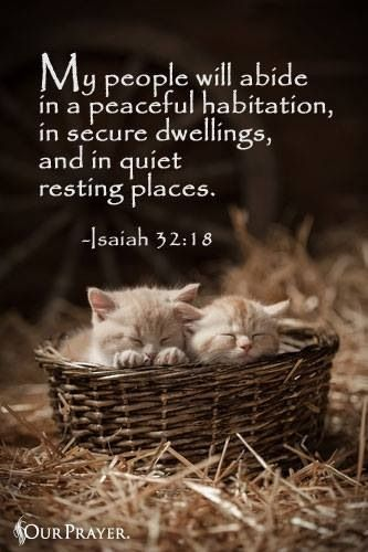 My people will dwell in a peaceful habitation, In secure dwellings, and in quiet resting places, [Isaiah 32:18]